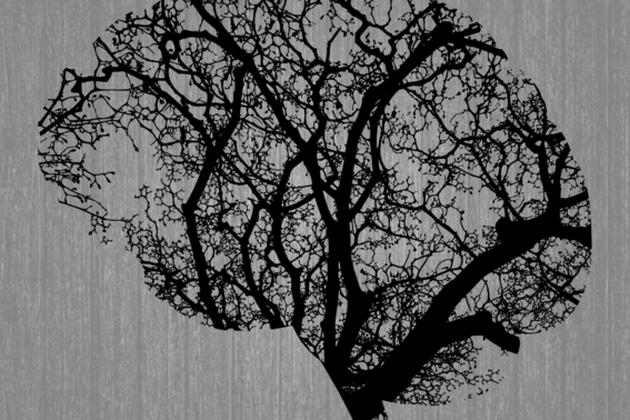 Brain growing like a tree in black, on top of light black and white wood background